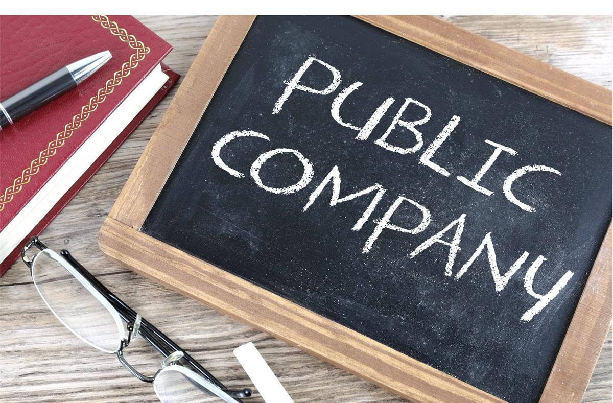 Public Company