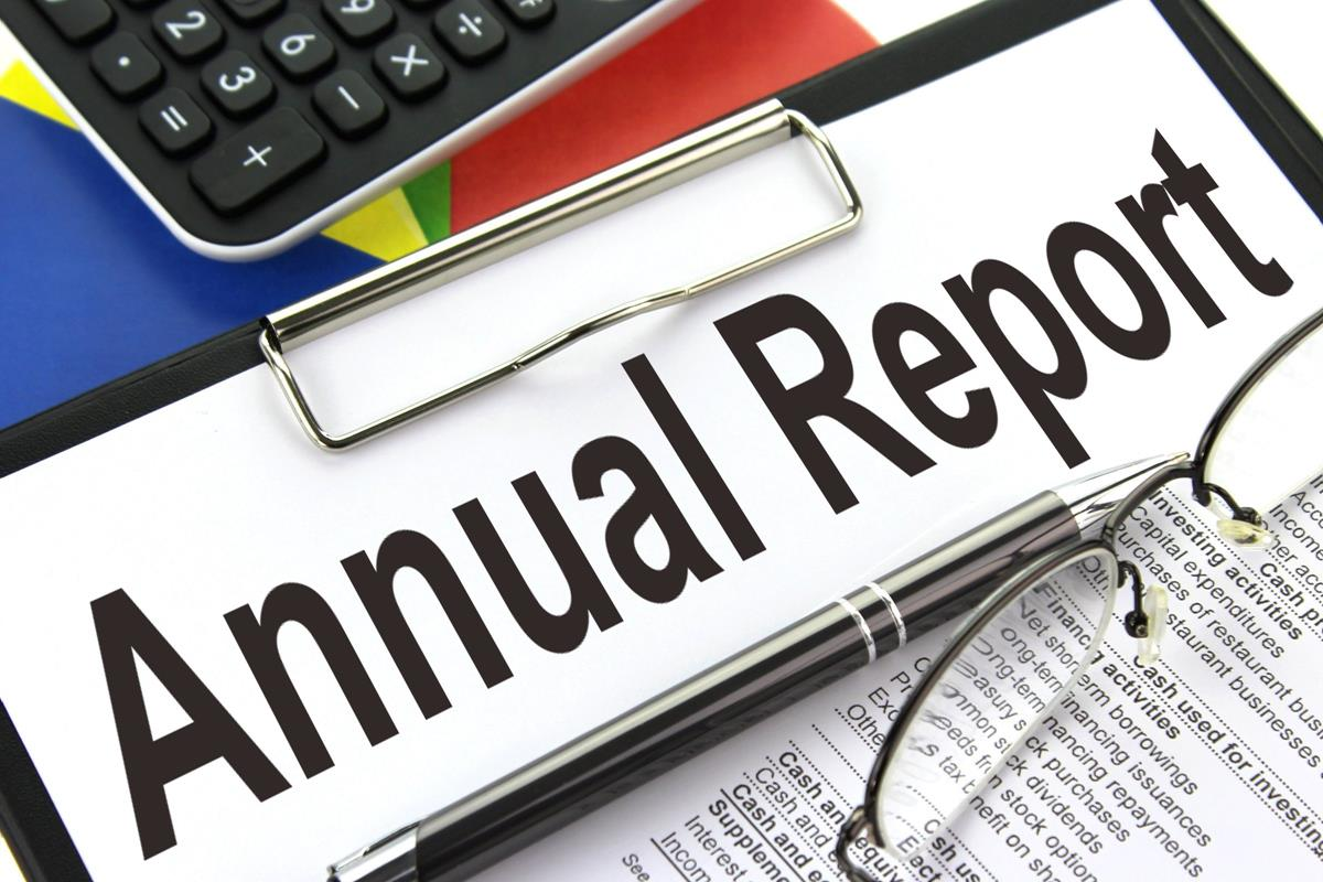 Image result for Annual Report stock