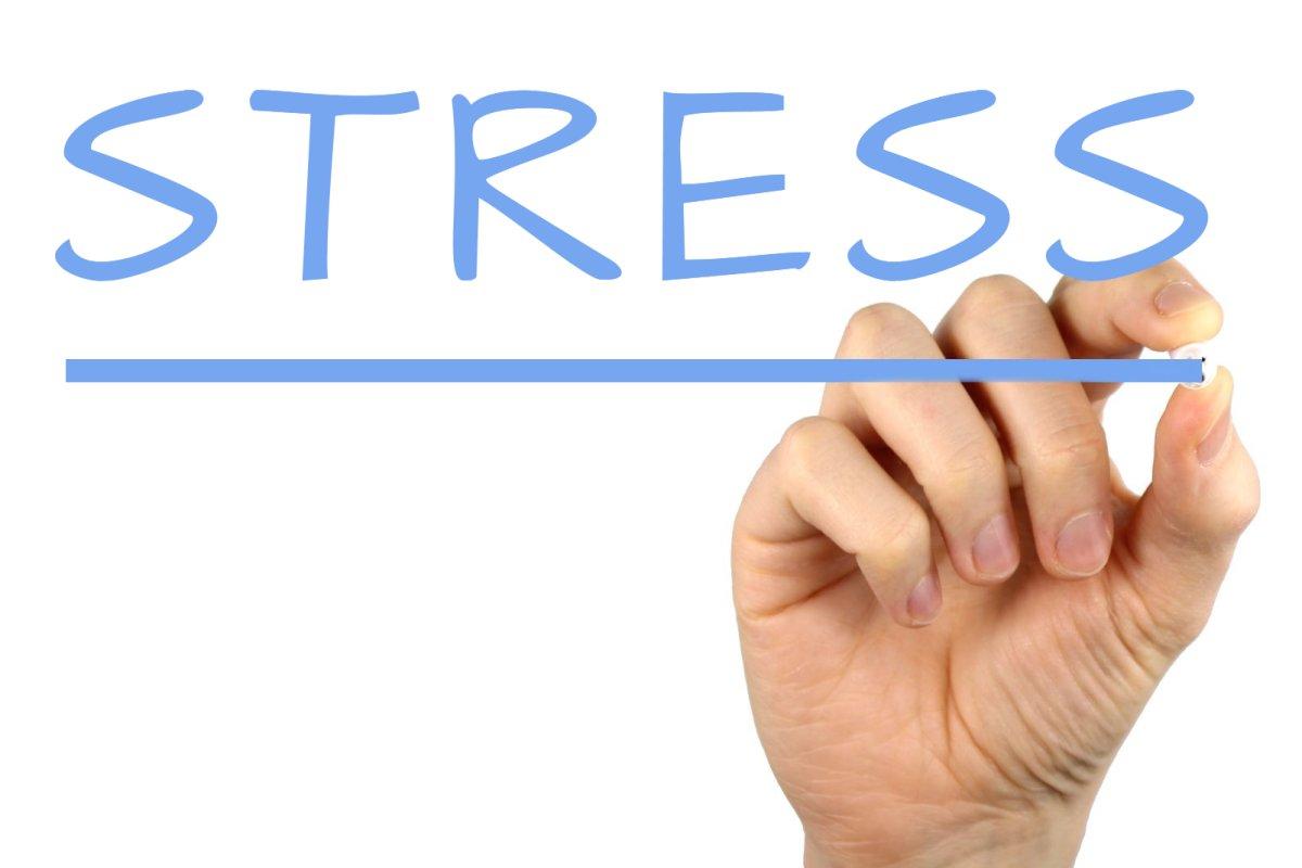 「stress」の画像検索結果
