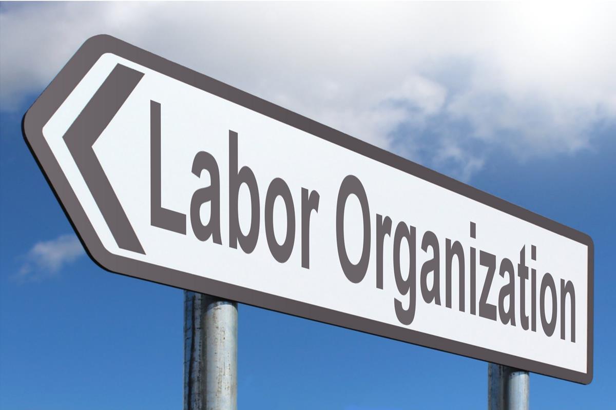 Labor Organization