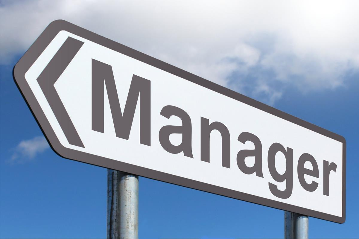 Roles and Responsibilities of Professional Managers