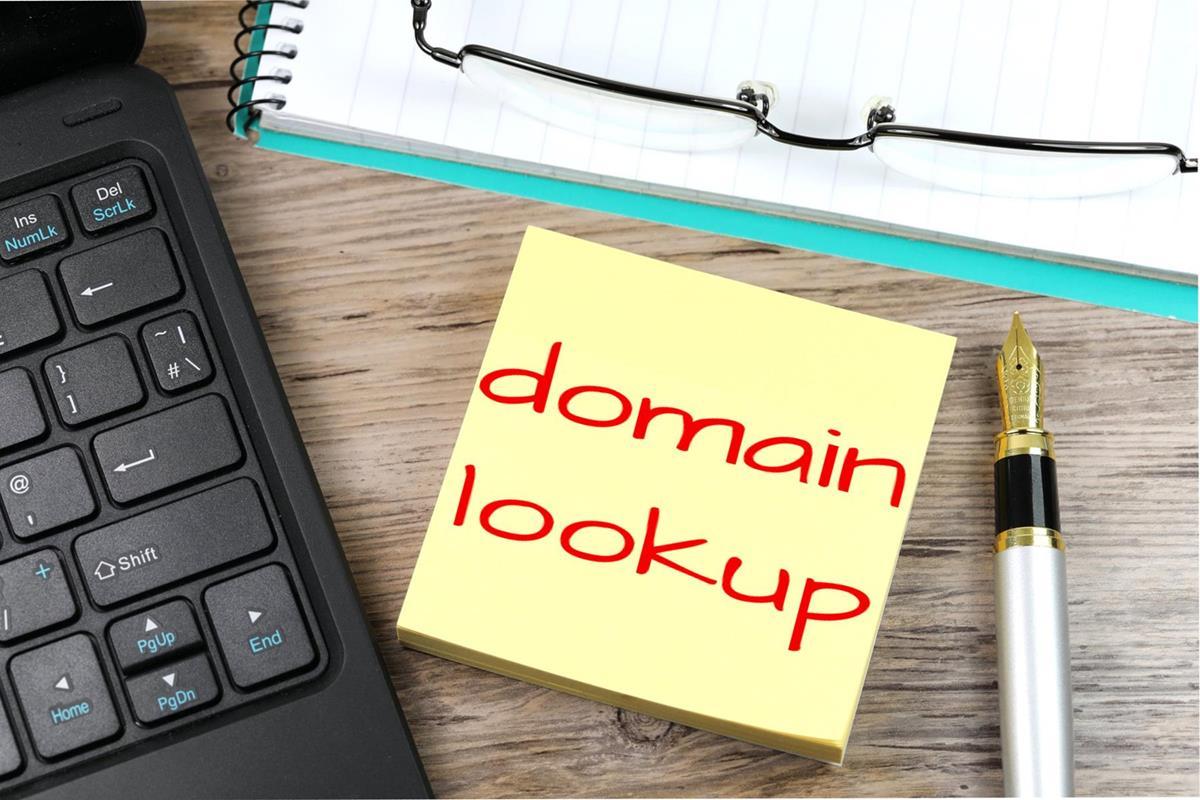 Domain Lookup